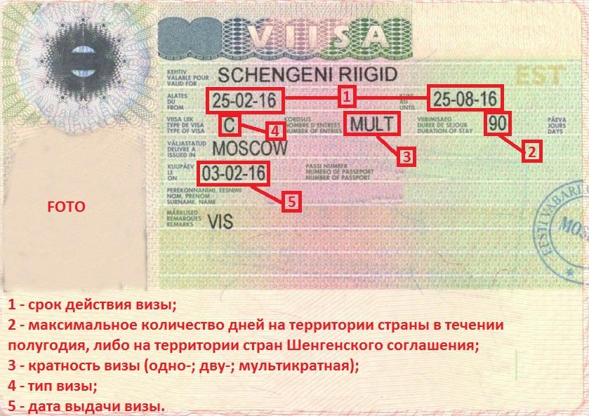 Сроки действия шенгенских виз: актуальная информация