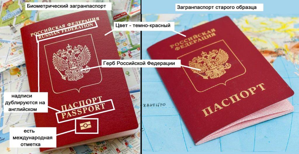 Виды и отличия заграничных паспортов: обычный и биометрический