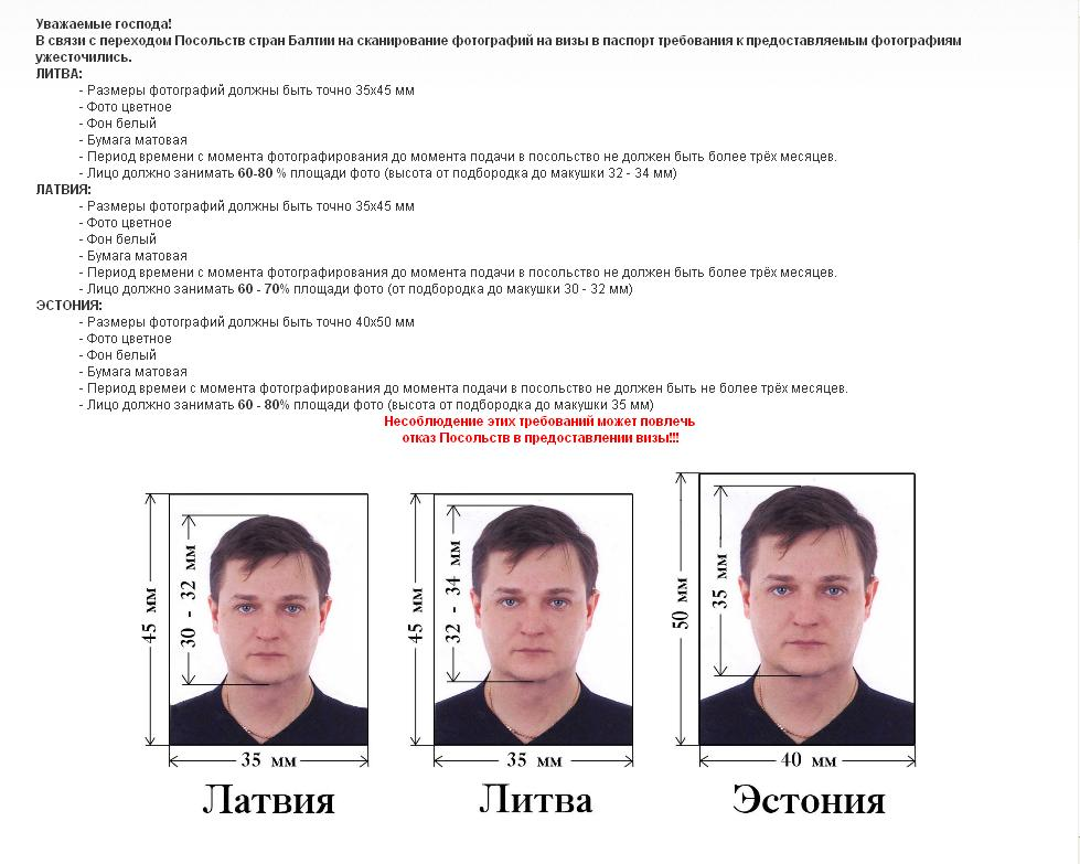 Виза в Таллин: виды, документы и нюансы по получению визы