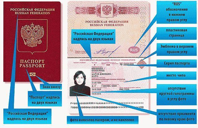 Серия и номер загранпаспорта: как узнать, особенности и тайны