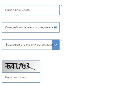 Проверка запрета на въезд в Россию: запрет, разрешение, снятие