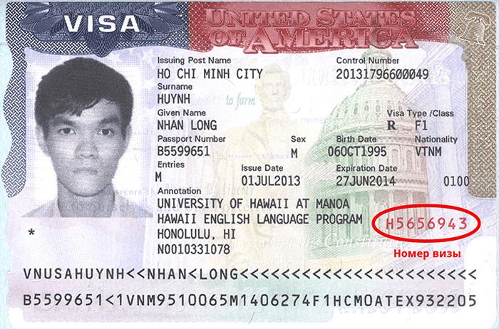 Номер визы США: как узнать и где написан, зачем нужно знать?